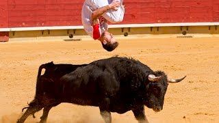 Parkour vs Deadly Bulls (Danger Art 2016) #3