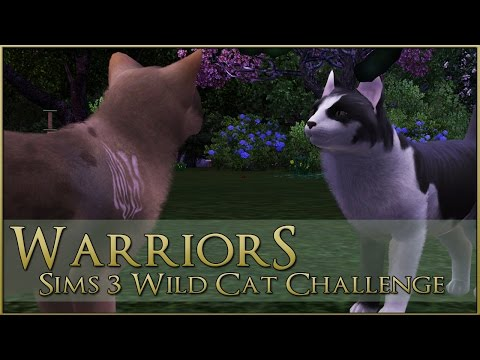The Branch in the Crows Path || Warrior Cats Sims 3 Legacy - Episode #69