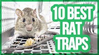 10 Best Rat Traps 2017 | Getting Rid Of Rats