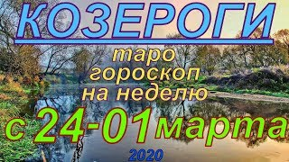 ГОРОСКОП КОЗЕРОГИ С 24 ФЕВРАЛЯ ПО 01 МАРТА.2020