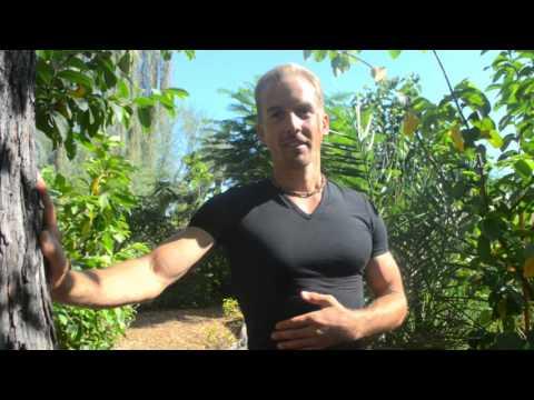 Awesome Suburban Food Forest - Tempe, AZ - Jake Mace
