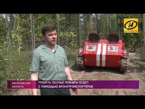 Лесные пожары будут тушить с помощью бронетранспортёров на Могилёвщине