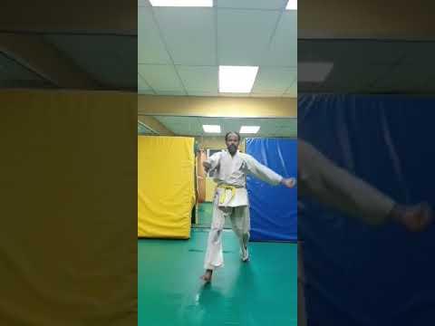 Kyokushin karate training