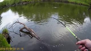 зимняя рыбалка в Липецкой области на Дону  январь 2016г. Сом_Елец