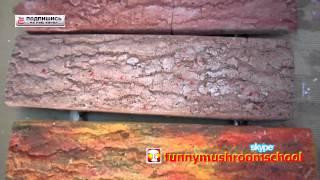 Гипсовая плитка КОРА ДЕРЕВА, как сделать гипсовую плитку(Разные варианты покраски самостоятельно изготовленной гипсовой плитки показано на видео