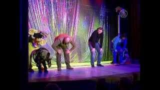 Театр кошек Куклачёва вновь даёт спектакли  (новости)
