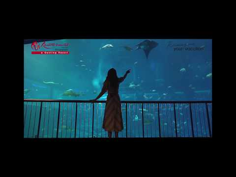 Rakul Preet Singh at S.E.A. Aquarium Mp3