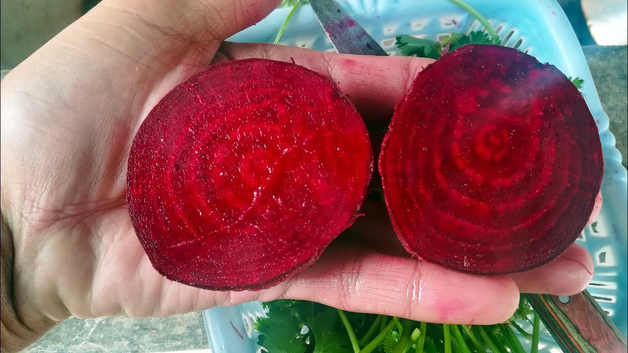 Gamalon mein beetroots (chukandar) | Growing and care - Urdu/Hindi