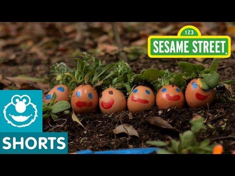 Sesame Street: G is for Garden