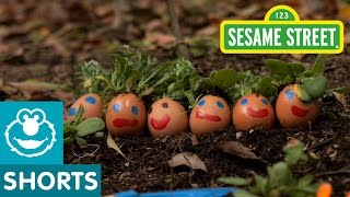 Sesame Street: G is for Garden