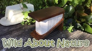 Insect Hotels - DIY Bug Hotel For Ladybirds / Lacewings