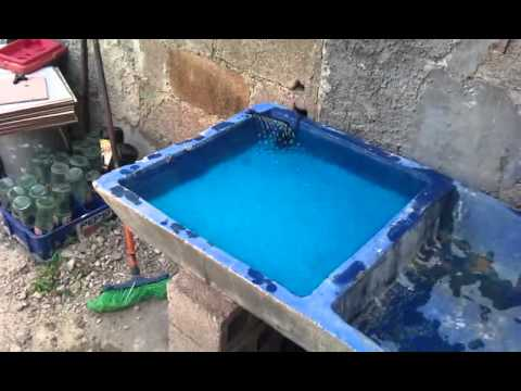 Estanque de peces mini youtube for Como se construye una piscina de concreto