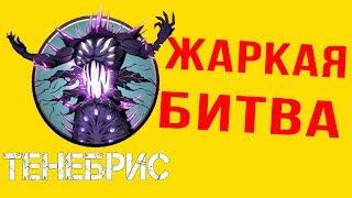 Скачать Shadow Fight 2 ПОБЕДА НАД ТЕНЕБРИС