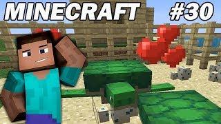 Minecraft Survie FR : On retourne voir l'élevage de tortues ! EP30