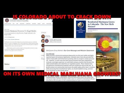 Colorado Cracking Down on Medical Marijuana Patients and Caregivers?