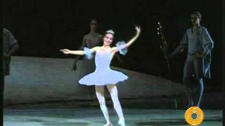 Bolshoi Ballet - The Nutcracker - Dance of the Sugar Plum Fairy - Ovation