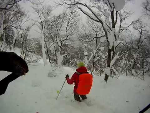 Ski au Japon passage en foret.