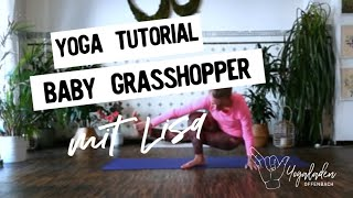 How to Baby Grasshopper mit Lisa