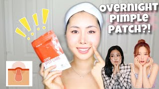 Baixar How To Treat Pimples FAST like Korean Celebrities! *affordable* 👶🏻