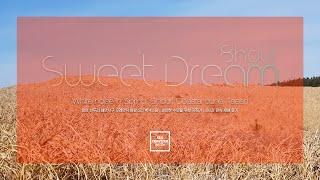 편안한 수면 | 충남 태안 신두리 해안사구 모래언덕 ✦…