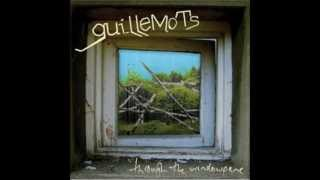 Watch Guillemots Through The Windowpane video