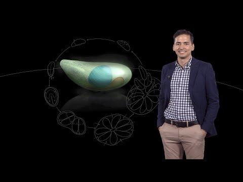 Sebastian Lourido (Whitehead Inst. & MIT) 1:Toxoplasma gondii: a model apicomplexan
