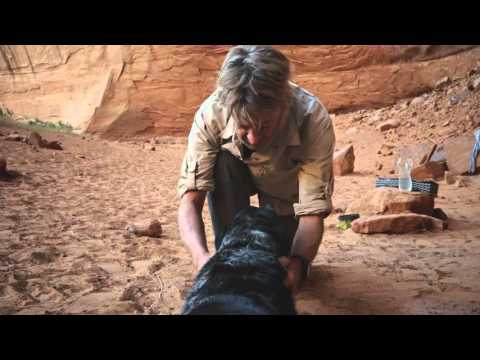 Ace and the Desert Dog - from Vasque Hiking Footwear