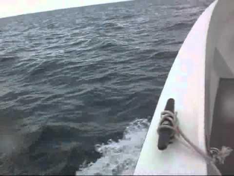 Offshore trip in Negros