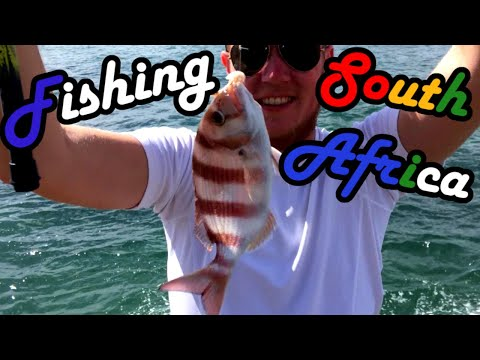 South Africa - Animals and Angling (fishing) around Capetown