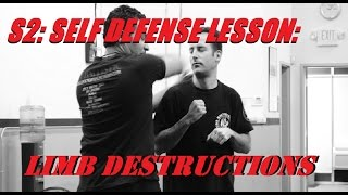 Self Defense Lesson: Destroying A Punch with Limb Destructions