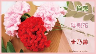 【TiA的D.I.Y教室】《編織》D.I.Y教學 - 鉤織母親花康乃馨 | Crocheted carnation