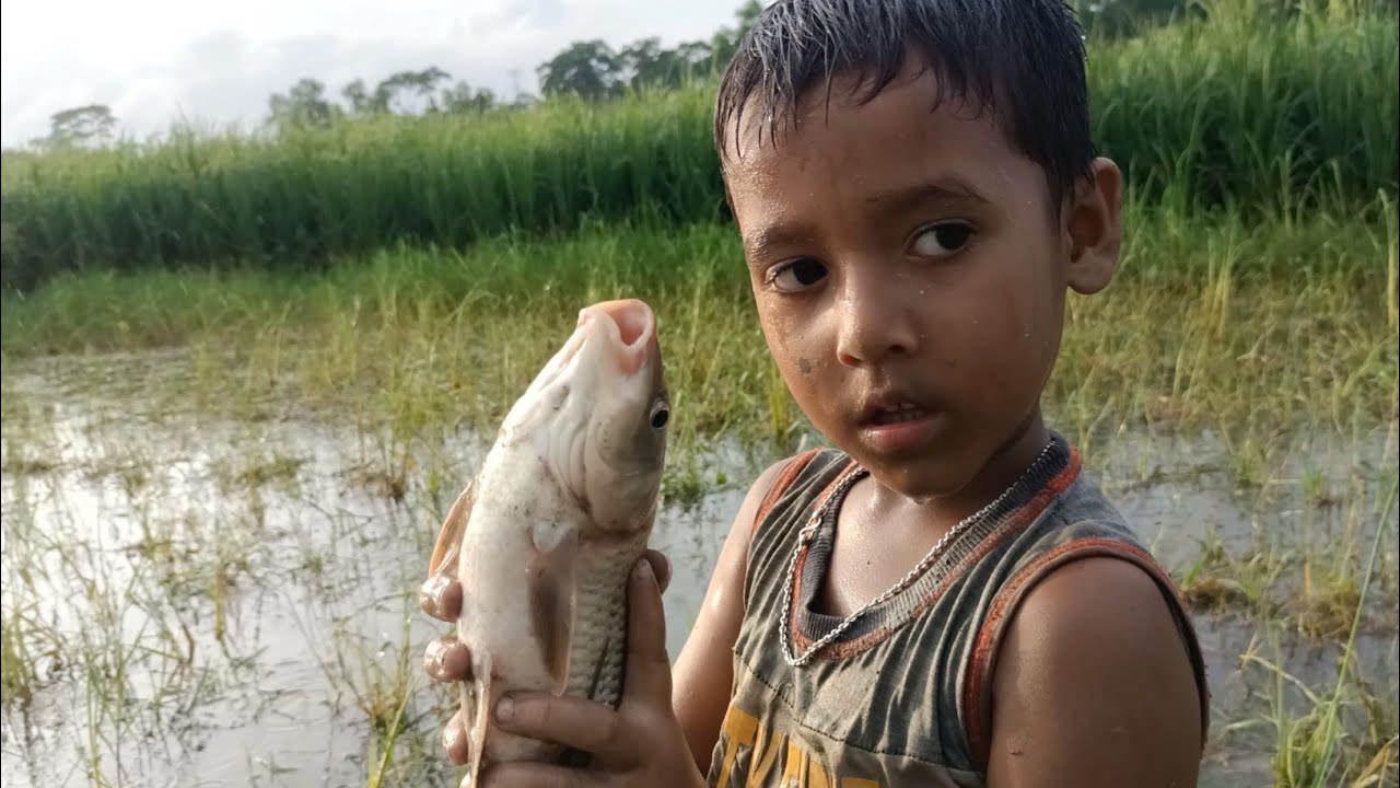 Best Hand Fishing😲 Cute Boy Catching Big Fish By Hand Fishing