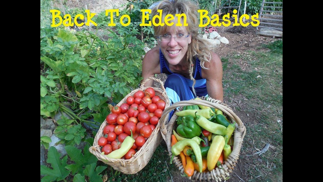 Back To Eden Gardening: Wood Chip Basics 101 - YouTube