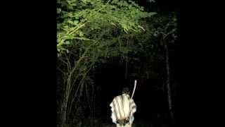 Deep Celtic Moments: Davy Spillane - Midnight Walker (720p)