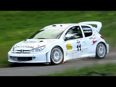 Peugeot 206 WRC Tribute - Sound & Loud Anti-Lag