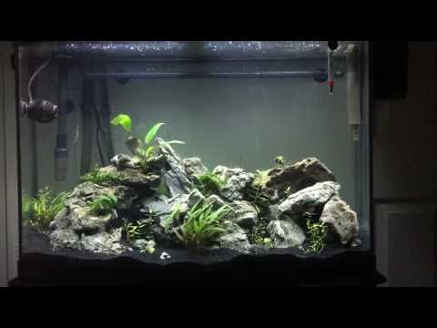 how to make brackish water for aquarium