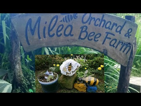Milea Bee Farm | Lipa, Batangas 2017