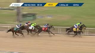 Vidéo de la course PMU PREMIO COURAGEUSE
