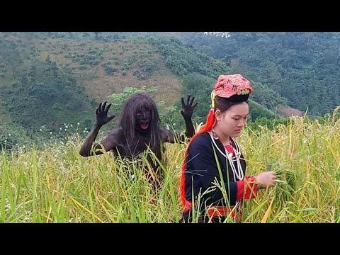 Kêm Mun : Người Rừng Gặp Cô Gái Dân Tộc Trên Núi | Getting her to be a wife