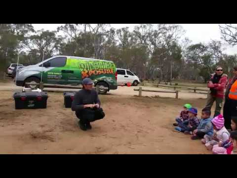 Australian Kindergarten Education System