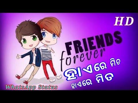 Hai Re Mita Odia Friendship Song For Whatsapp Status