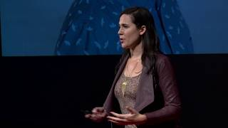 Emerging Technologies - How Emerging Technologies Can Give Voice to History   Sarah Stevenson   TEDxCapeMay