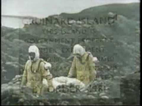 Gruinard Island Anthrax Biological Warfare Experiment Great Britain 1942
