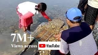 Live-Gold in sand of Karnali river, Nepal - नेपालकाे बालुवामा सुन पाइन्छ