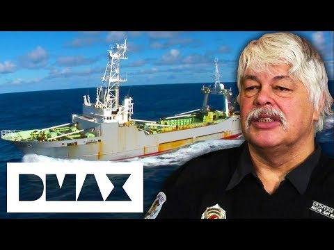 A Mysterious Ship Is Following The Sea Shepherds | Whale Wars