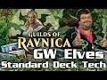 G/W Elves Guilds of Ravnica Standard Deck Tech for Magic: The Gathering & Magic Arena!