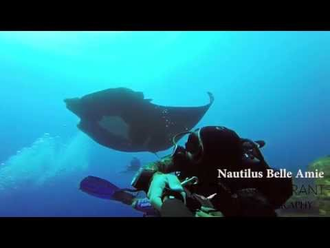 Islas Revillagigedos - Socorro Aboard the Nautilus Belle Amie