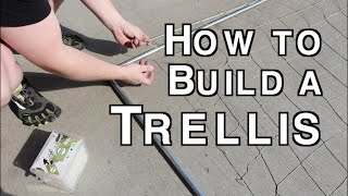How To Build An Trellis Using Electrical Conduit Simple And Cheap