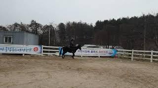 용인씨씨레저승마클럽 첫 눈과 첫 기승