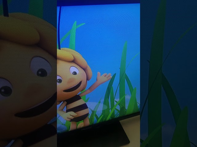 Hidden inappropriate drawing in Maya the Bee!